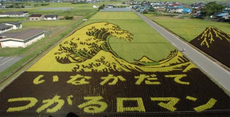 Тамбо - искусство японских землепашцев