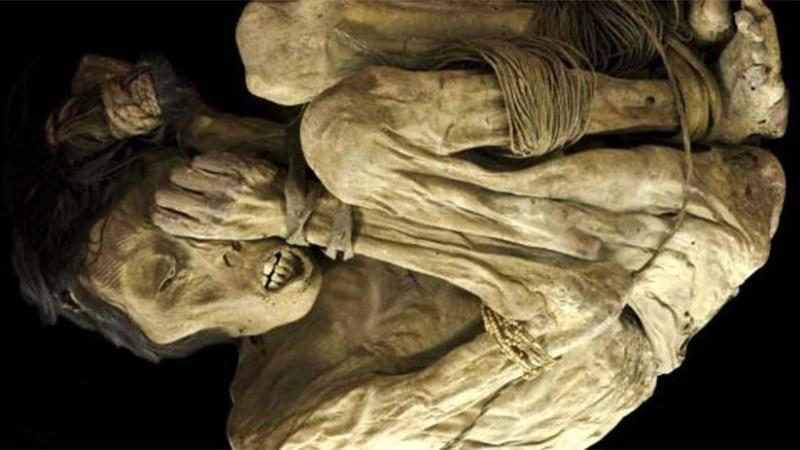 Невероятные артефакты в торфяных слоях