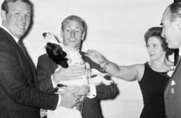 Pickles bobby charlton world cup 1966 jules rimet