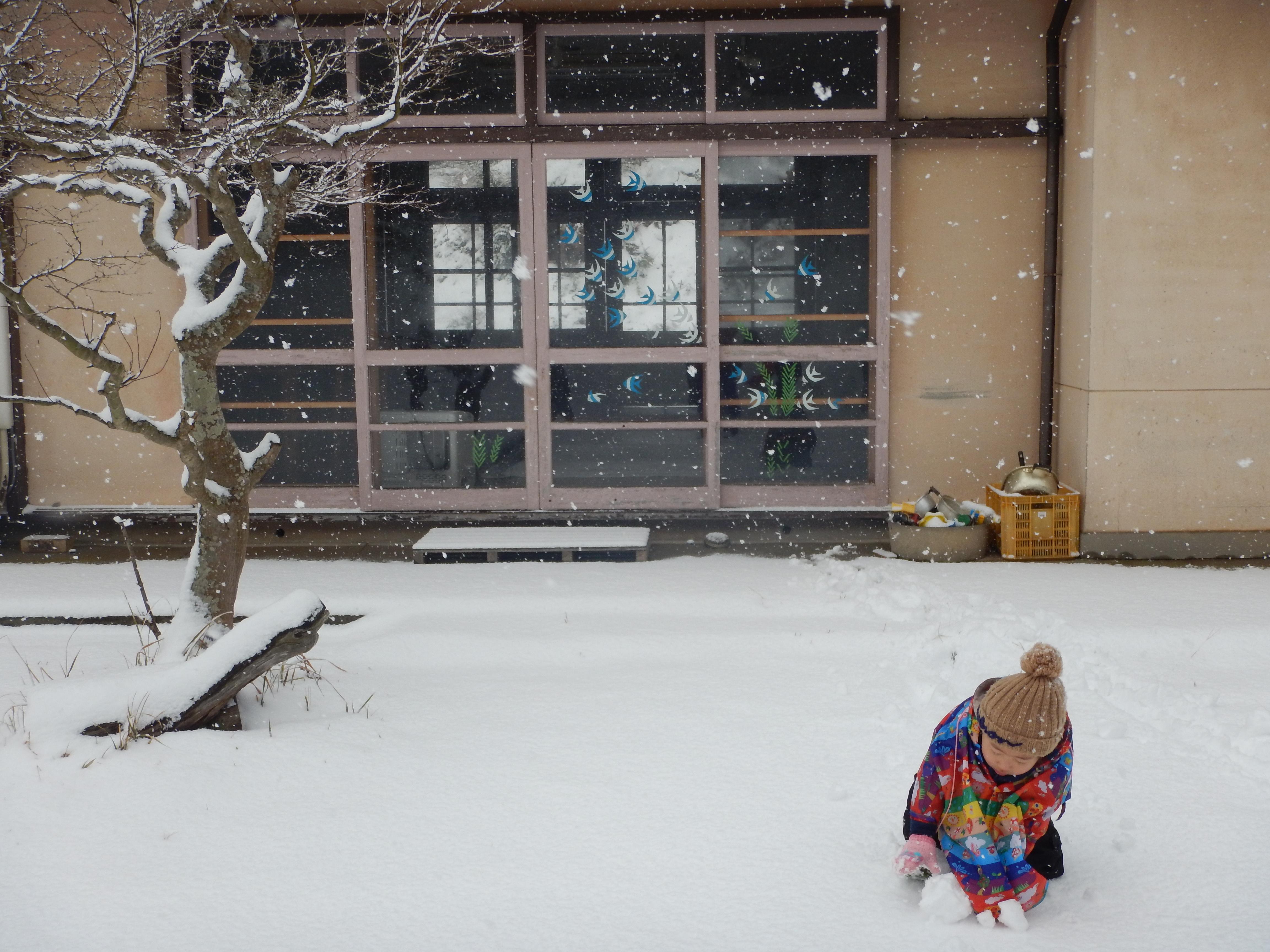 海士町!数十年ぶりの大雪!