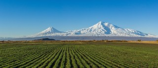 Mount Ararat and the Araratian plain