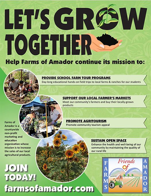 Let's Grow Together Poster