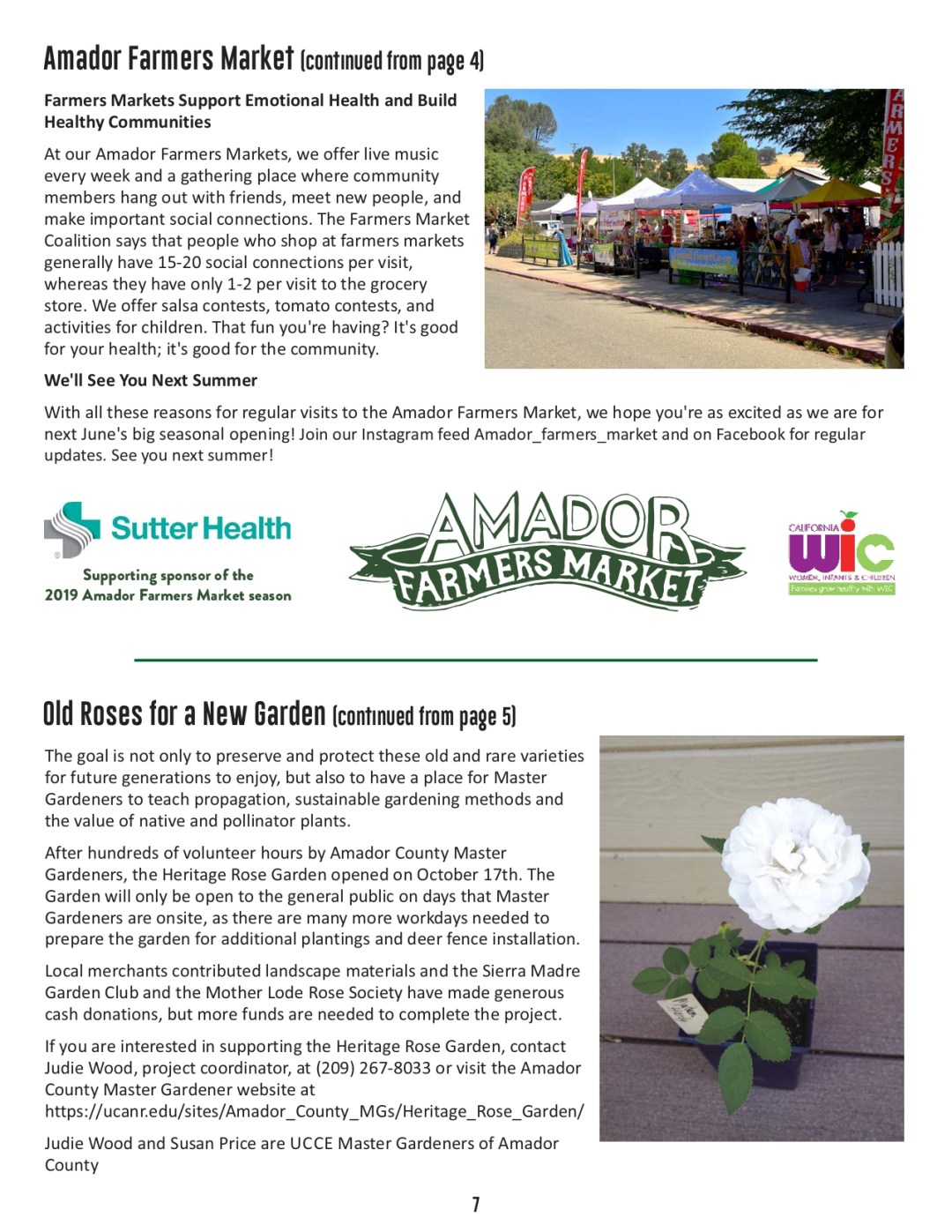 Winter 2019 newsletter page 7