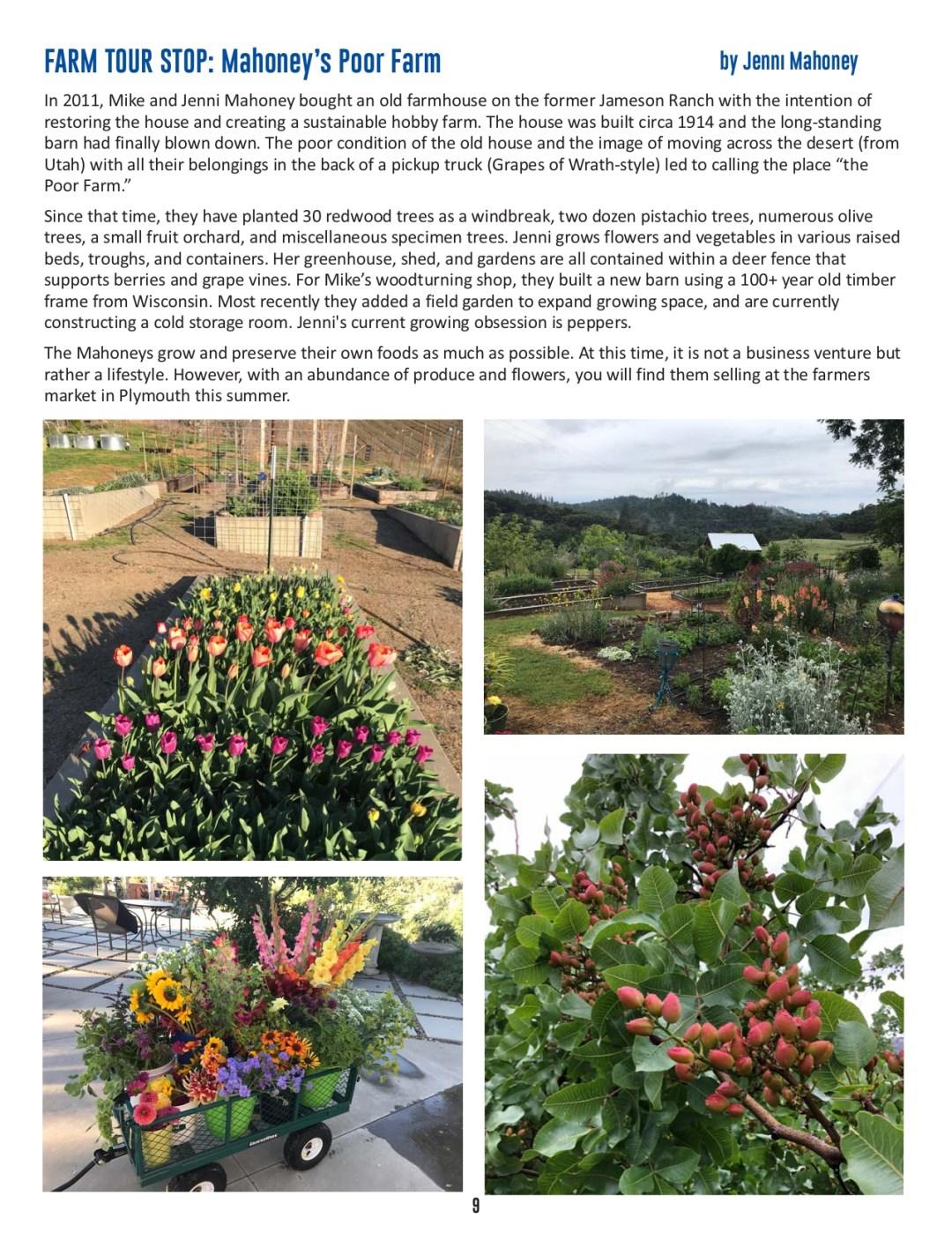 FOA Newsletter - Summer 2021 - pg 8