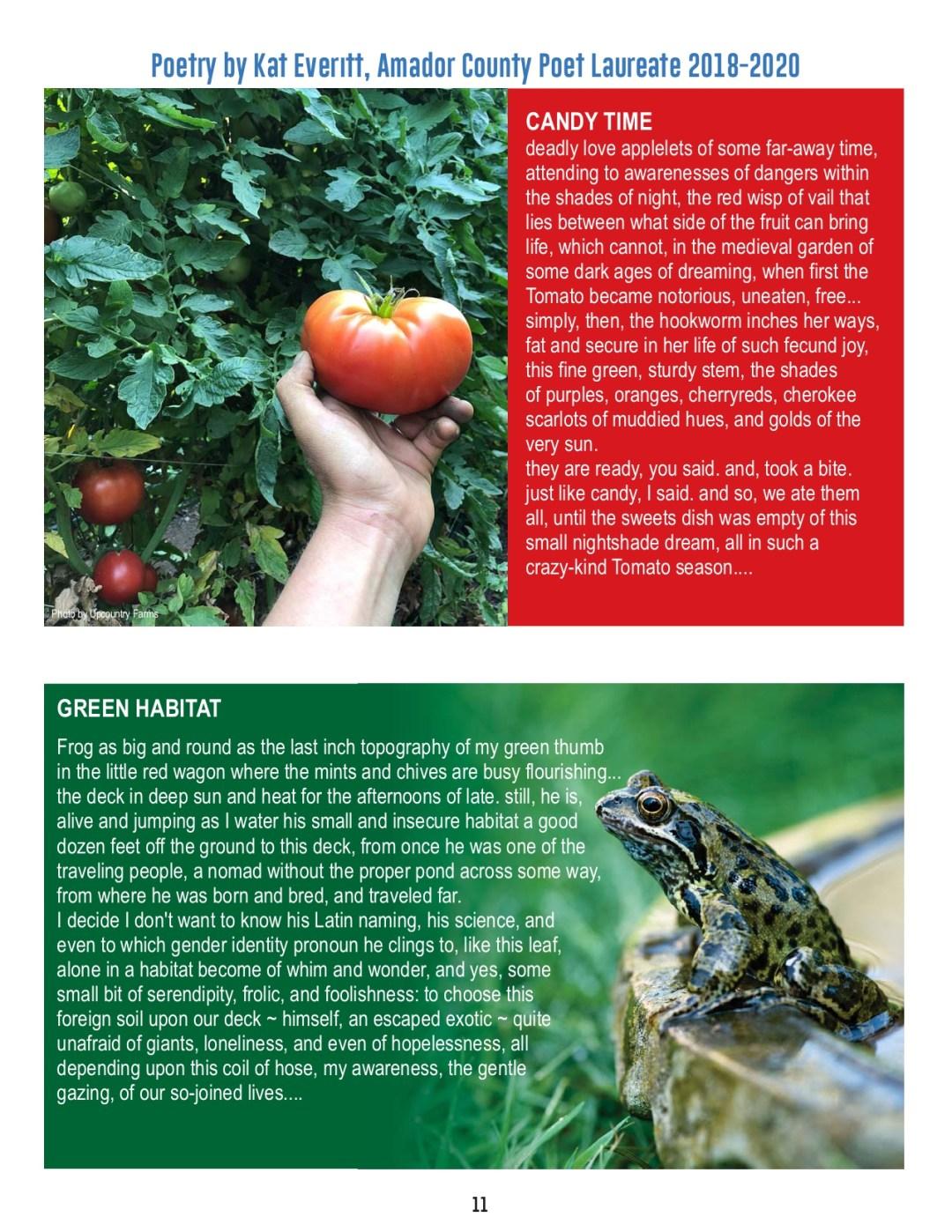 FOA Newsletter - Summer 2021 - pg 11