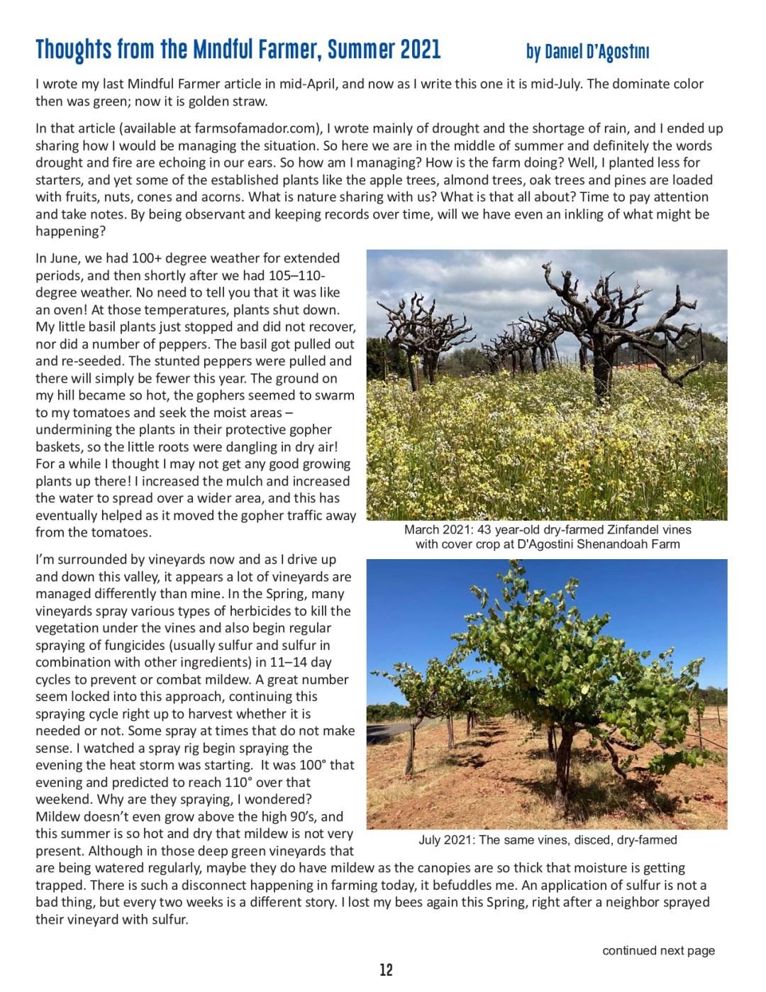 FOA Newsletter - Summer 2021 - pg 12
