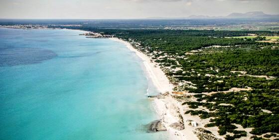 Es Trenc, spiaggia vista dall'alto