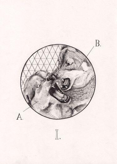 Peter Carrington Illustration5