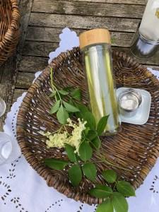 Sommer Edition – Holunderblüten-Tee und Holler-Milch