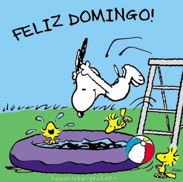Feliz domingo, snoopy