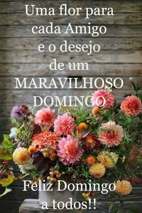 Feliz domingo! Uma flor para cada amigo