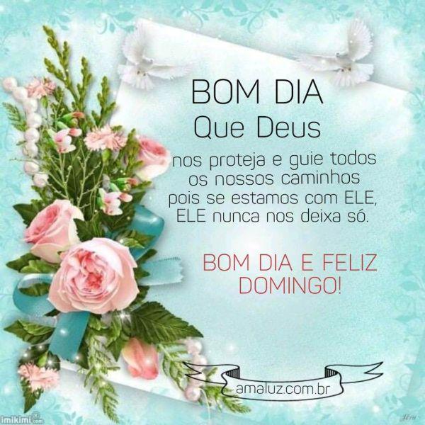 imagem de bom dia com flores desejando um feliz domingo