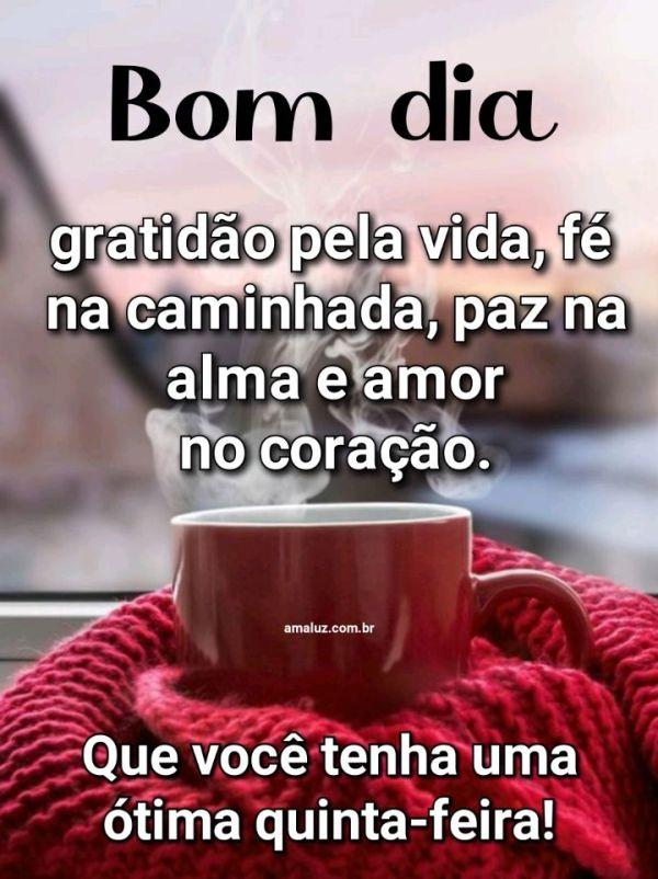 Bom dia gratidão pela vida