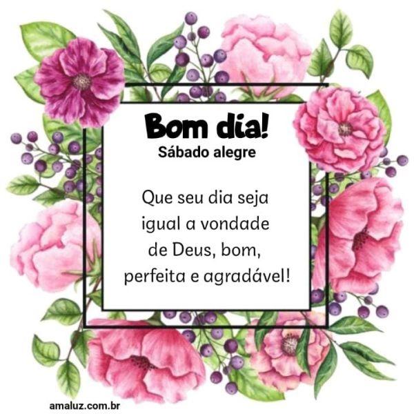 Bom dia que seu dia seja igual a vontade de Deus