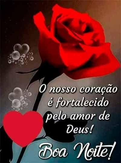 Boa noite! Você aceita essa linda rosa como o meu carinho de boa noite