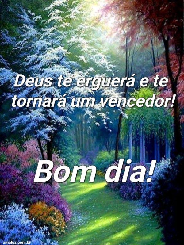 Bom dia, Deus te erguerá e te tornará um vencedor.