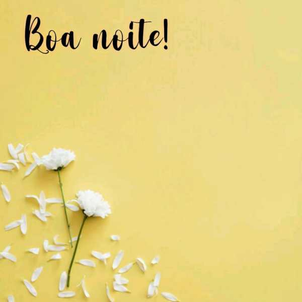 flores branca com fundo amarelo e boa noite