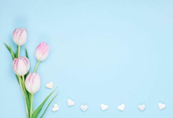 imagem com fundo azul lindas flores e coraçãozinhos
