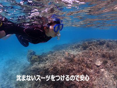 沈まないスーツで安心。ウミガメシュノーケル。