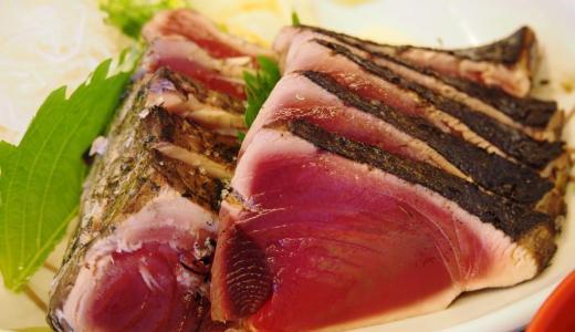 高知県道の駅「なぶら土佐佐賀」とにかくカツオ、カツオのたたきが絶品!塩・タレ両方楽しめるよ