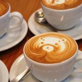 アコルドコーヒー カプチーノ