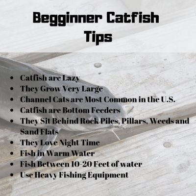 How to Catch Catfish Any Time of Day or Night | A Man and