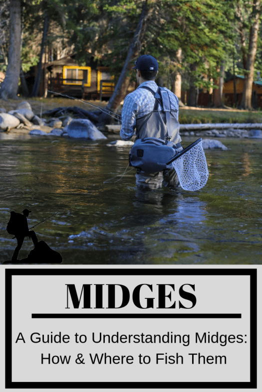 midge fish why and how to fish them