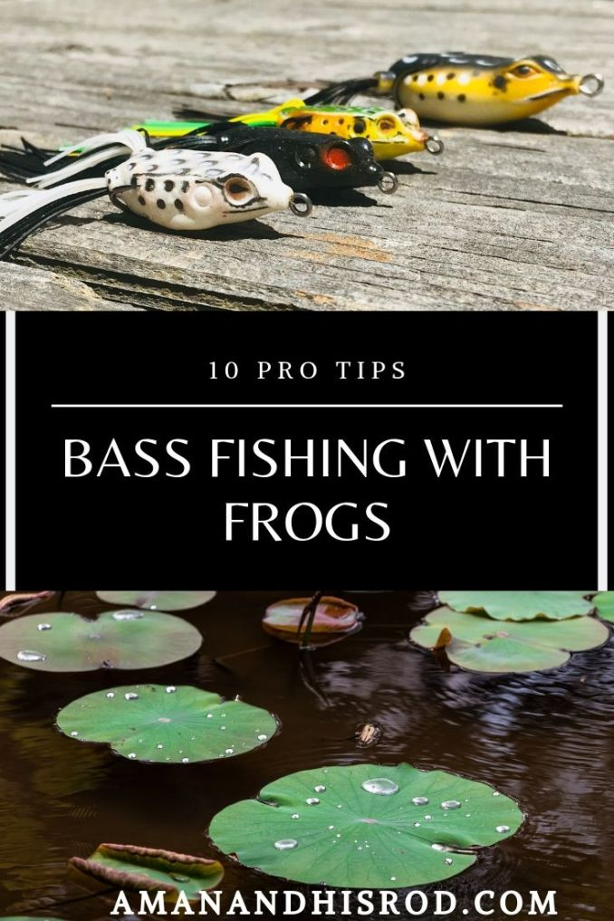 bass fishing with frogs