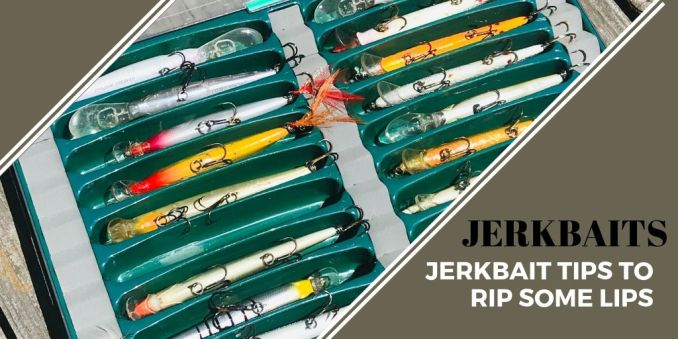 tackle box with jerkbaits
