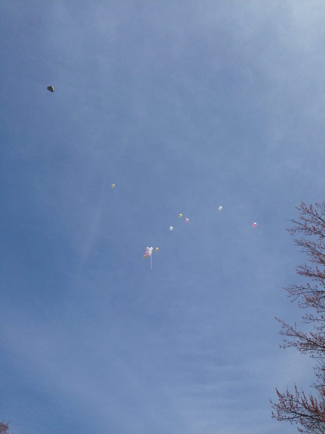 Balloons on the lose :)