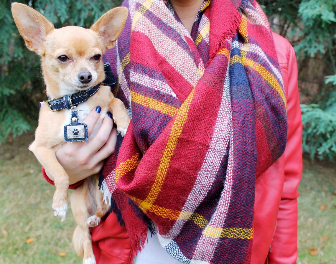 KnitPopShop Maroon Blanket Scarf