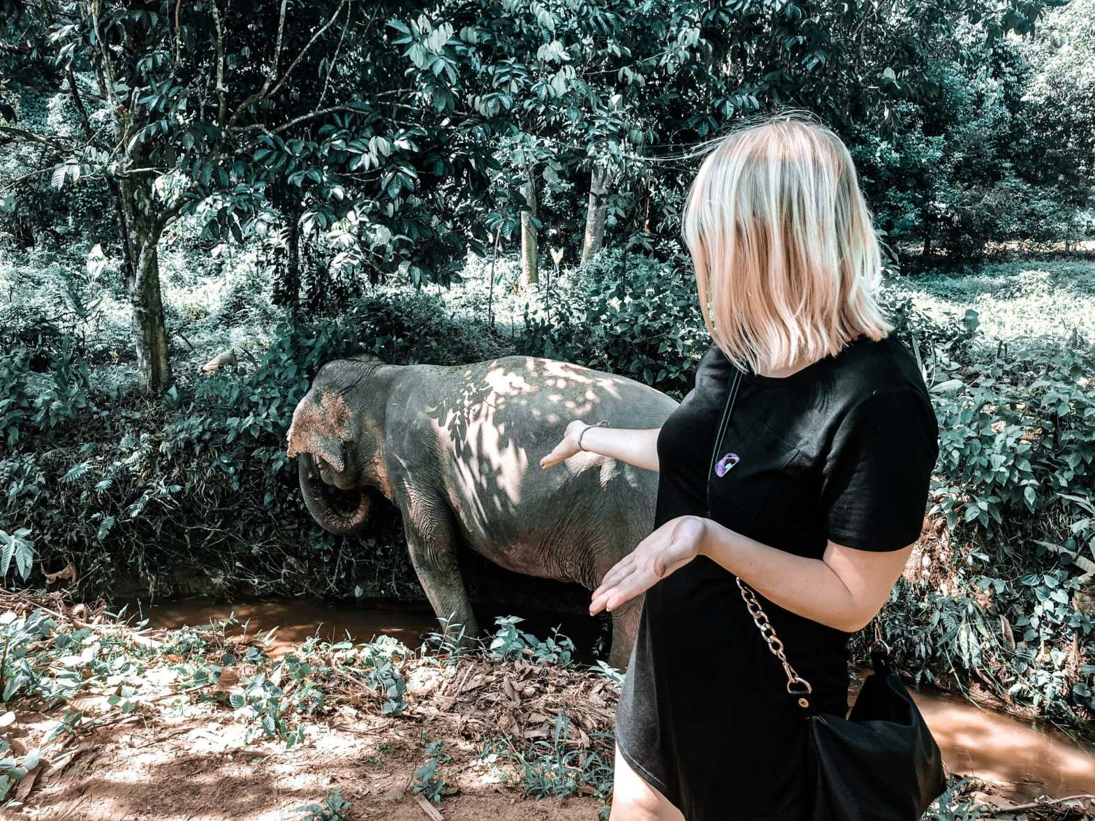 woman standing in front of elephant that is in a creek