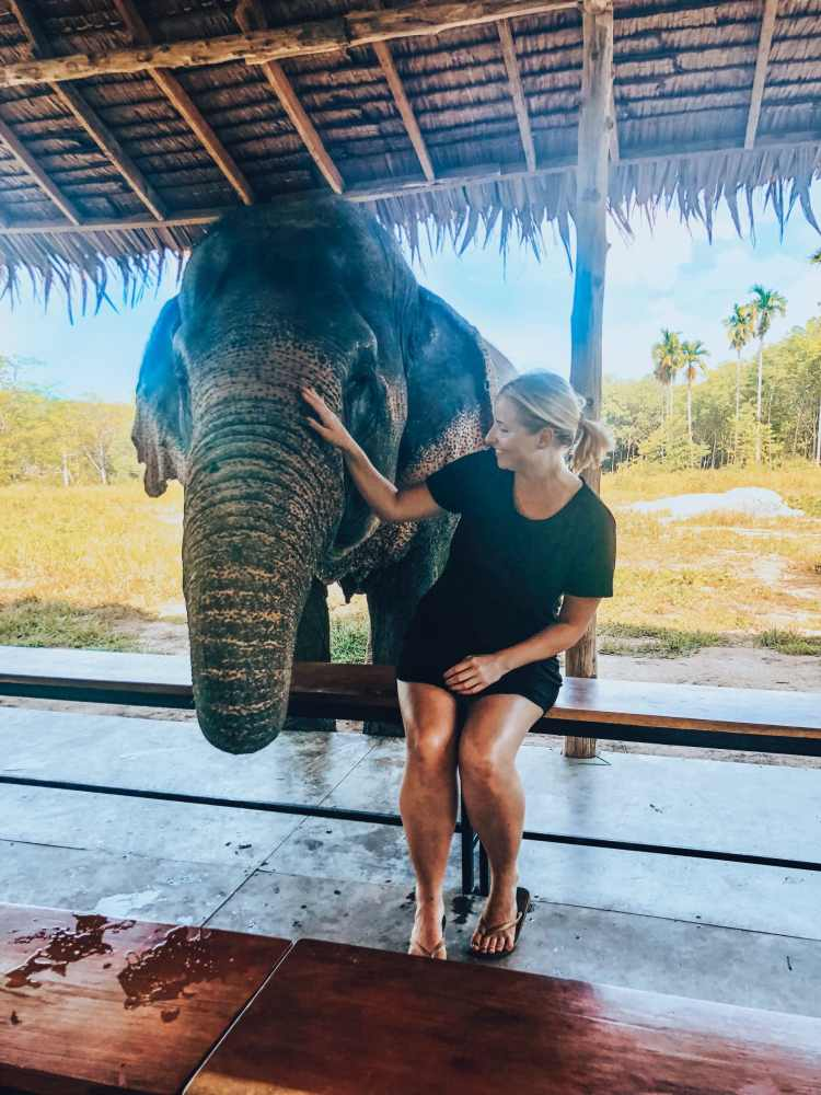 woman petting elephant in sanctuary