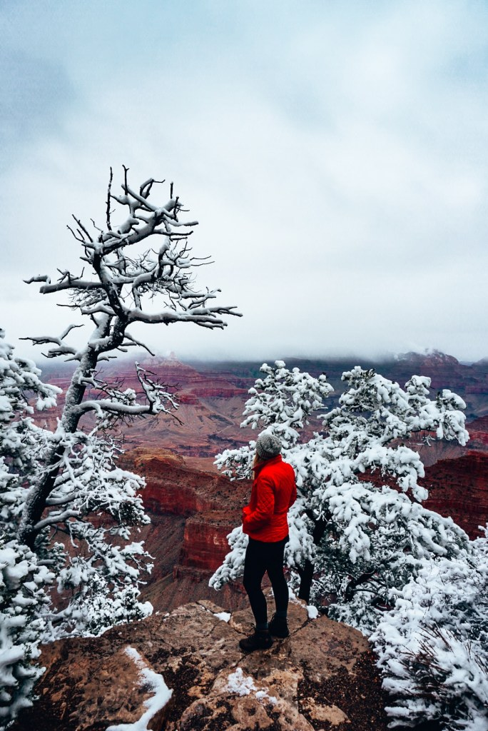 Woman standing near the edge looking out to the Grand Canyon, covered in snow