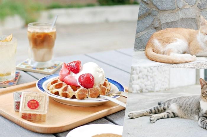 台南下午茶『台南老宅蜂大咖啡』在貓巷的療癒下午茶時光,少女系野莓鬆餅來啦!台南中西區 台南美食
