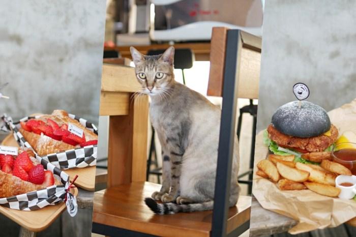 療癒系店貓店狗萌翻天『堤貝街咖啡』期間限定草莓可頌來啦!台南早午餐|台南下午茶