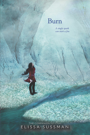 Cover of Burn by Elissa Sussman