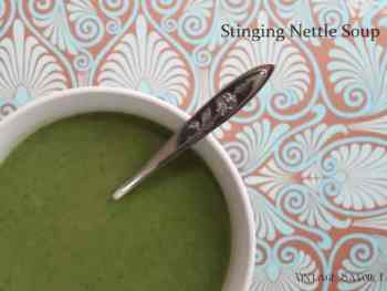 Stinging Nettle Soup Recipe