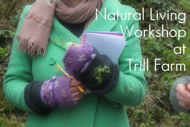 amandacook.me : Natural Living Course at Trill Farm - Spring 2013