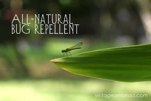 naturalbugrepellent