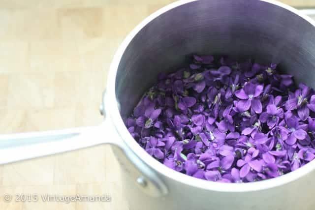 VintageAmanda_VioletSyrup-2