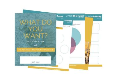 The Aligned Time Vision Challenge and Guide, a workbook to help you figure out what you want.