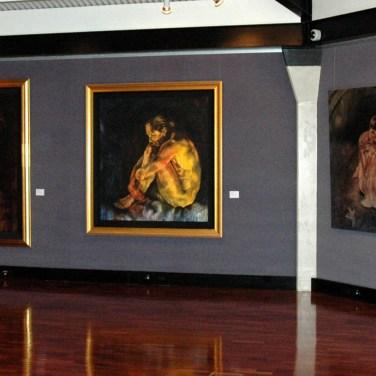 amanda_feher_exhibition_flesh_tableland_regional_gallery