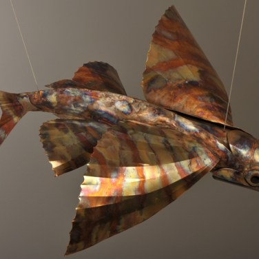 amanda_feher_sculpture_public_art_copper_and_stainless_steel_Flight_School_Flying_Fish_Strand Ephemera_Fish2.1