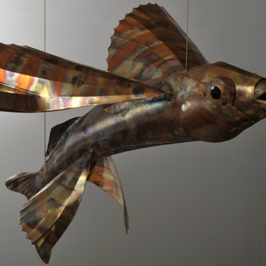 amanda_feher_sculpture_public_art_copper_and_stainless_steel_Flight_School_Flying_Fish_Strand Ephemera_Fish6