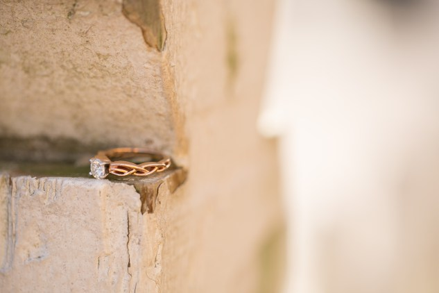 williamsburg-engagements-wedding-photo-photographer-15