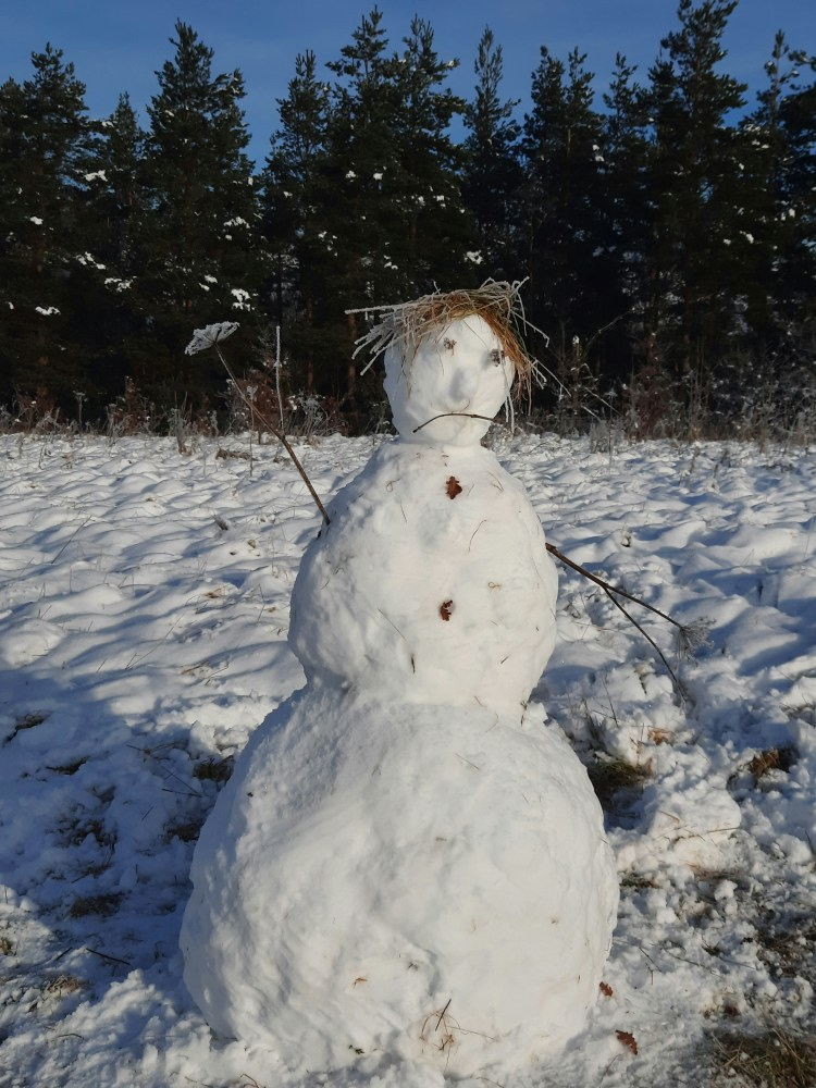 snowman with cow parsley arms