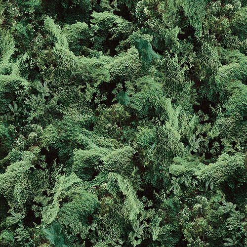 ivy-grid-11-flattened