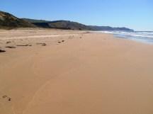 Ocean Beach, near Napier