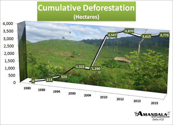 cumulative-deforestation